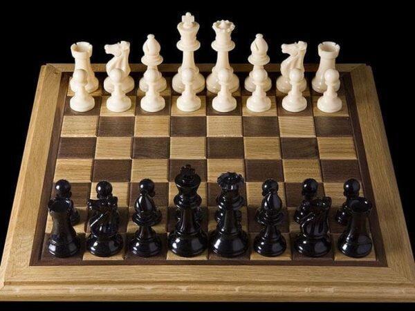 حامدی نیا: حمایتی از شطرنج بازان صورت نمی گیرد