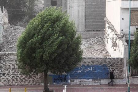 طوفان شب گذشته تهران خسارتی درپی نداشت