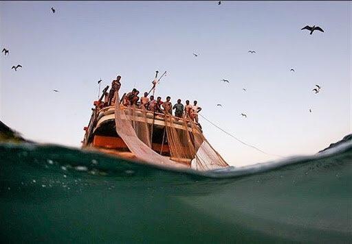 توقیف 19 شناور متخلف صیادی در آب های خلیج فارس