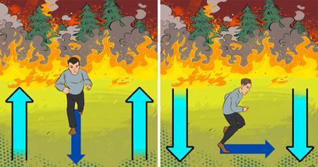 در یک آتش سوزی باید چه کنیم
