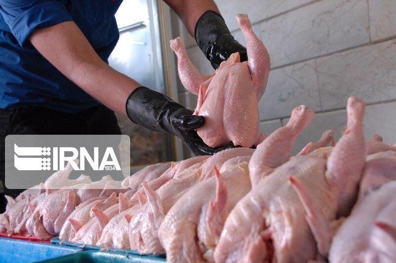 خبرنگاران افزون بر 10 هزار تن مرغ با نرخ مصوب در گیلان توزیع شد