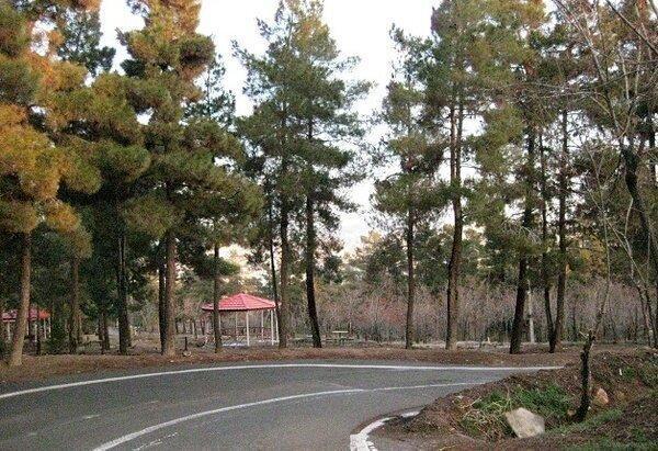 نصب آلاچیق و مبلمان پارکی