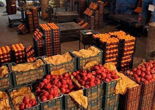 تهیه و ذخیره سازی 200 تن پرتقال و سیب برای شب عید در کهگیلویه و بویراحمد